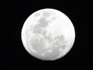 ¿Afecta  la luna al comportamiento del ser humano?